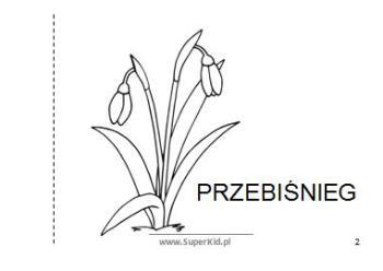 Ksiazeczka Moj Slowniczek Zwiastuny Wiosny Superkid