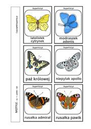 Obrazki Do Wydruku Motyle Superkid