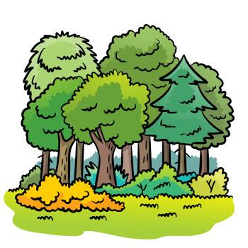 Znalezione obrazy dla zapytania Clipart las