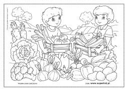 Kolorowanki Chętnie Zjadam Warzywa I Owoce Superkid