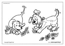 Kolorowanki Zwierzęta Wiosną Superkid
